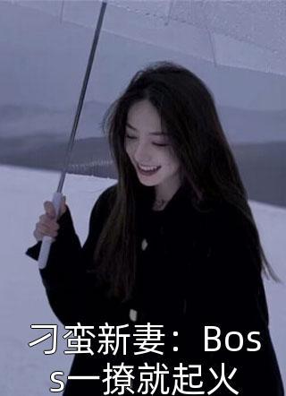 刁蛮新妻:Boss一撩就起火小说