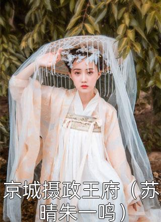 京城摄政王府(苏晴朱一鸣)小说